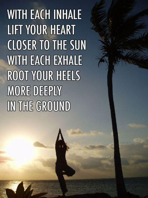 Quotes Yoga Prepossessing Yoga Quotes  Yoga Sayings  Yoga Picture Quotes