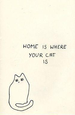 Home is where your cat is. Picture Quote #2