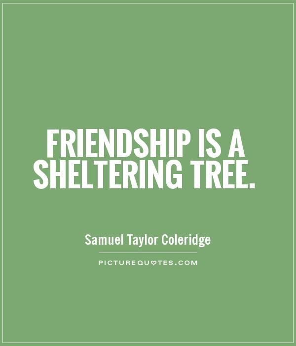 Friendship is a sheltering tree Picture Quote #1