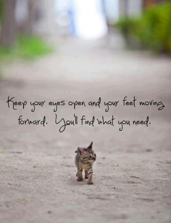 Keep your eyes open and your feet moving forward. You'll find what you need Picture Quote #1