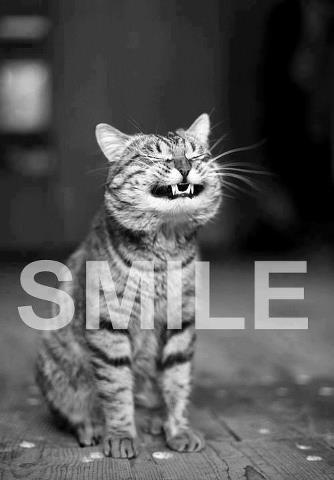 Smile Picture Quote #2