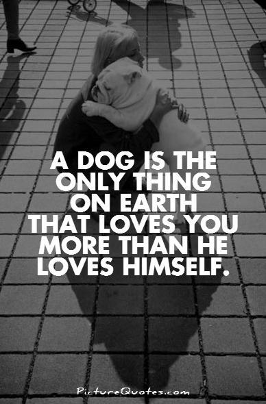 A dog is the only thing on Earth that loves you more than he loves himself Picture Quote #1