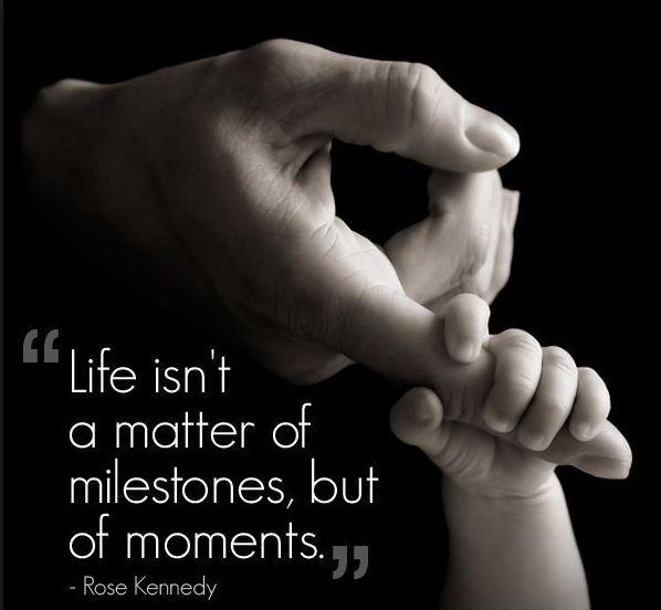 Life isn't a matter of milestones, but of moments Picture Quote #2