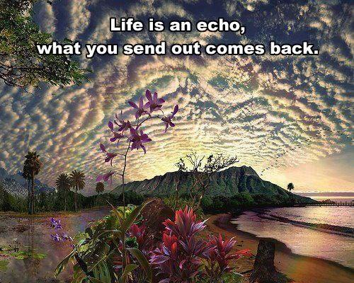 Life is an echo, what you send out comes back Picture Quote #1