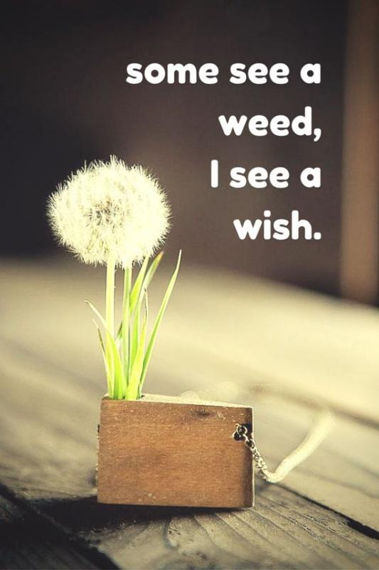 Some see a weed, some see a wish Picture Quote #2