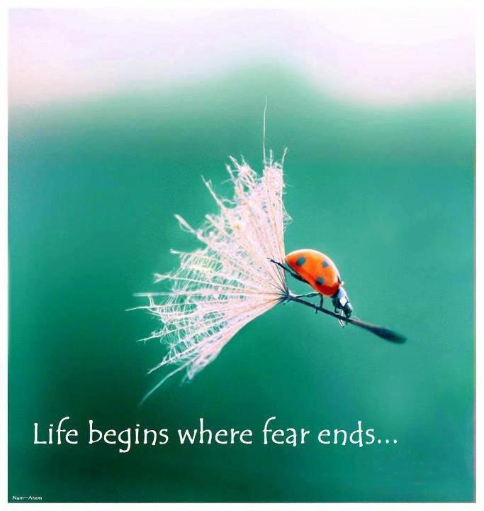 Life beings where fear ends Picture Quote #1