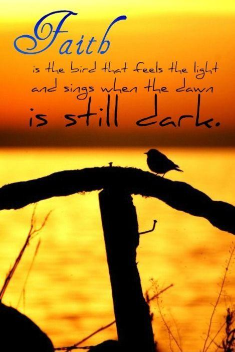 Faith is the bird that feels the light and sings when the dawn is still dark Picture Quote #1