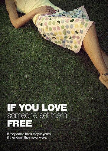 If you love someone set them free Picture Quote #1