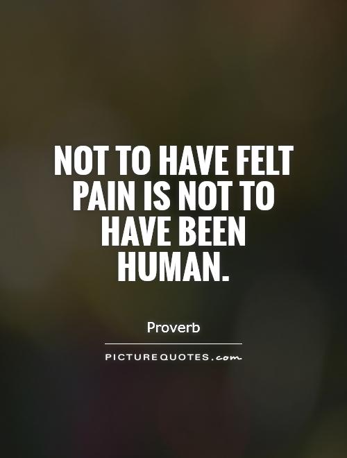 Not to have felt pain is not to have been human Picture Quote #1