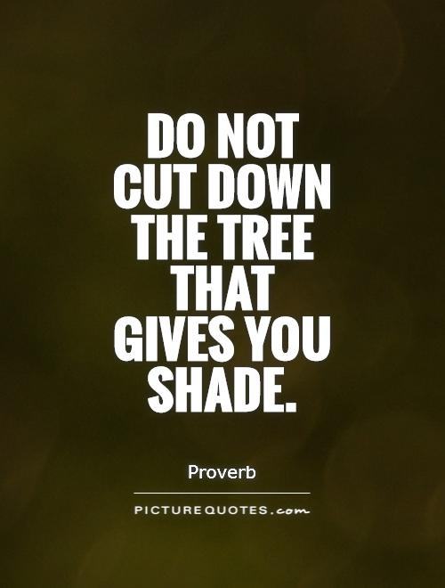 Do not cut down the tree that gives you shade Picture Quote #1