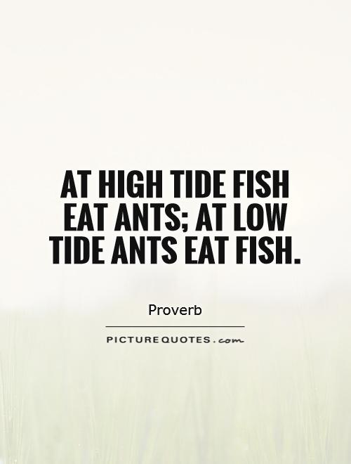 At high tide fish eat ants; at low tide ants eat fish Picture Quote #1