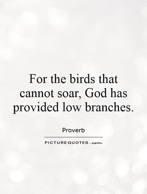 For the birds that cannot soar, God has provided low branches Picture Quote #1