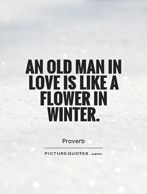 An Old Man In Love Is Like A Flower In Winter Picture Quotes