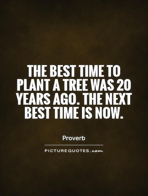 The best time to plant a tree was 20 years ago. The next best time is now Picture Quote #1