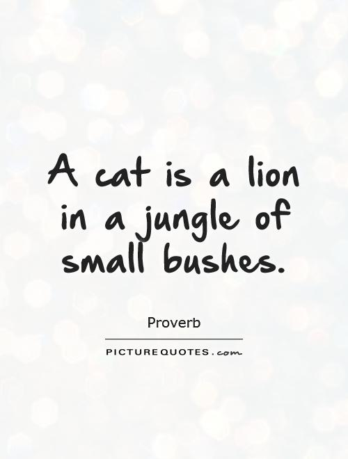 A cat is a lion in a jungle of small bushes Picture Quote #1