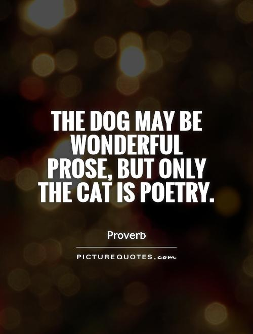 The dog may be wonderful prose, but only the cat is poetry Picture Quote #1