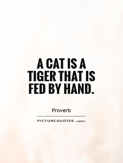 A cat is a tiger that is fed by hand Picture Quote #1