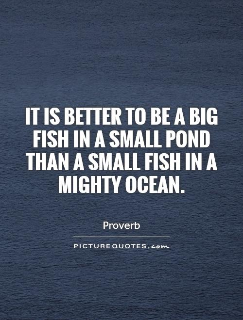 big fish quotes big fish sayings big fish picture quotes