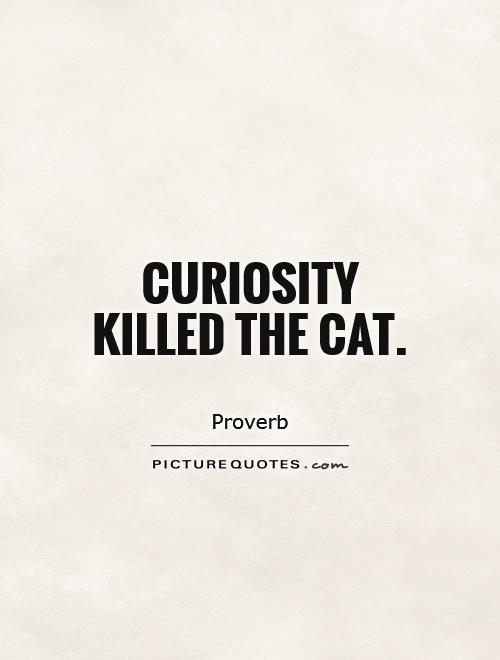Curiosity killed the cat Picture Quote #1
