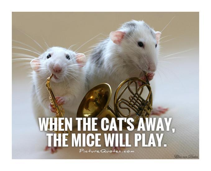 When the cat's away,  the mice will play Picture Quote #1