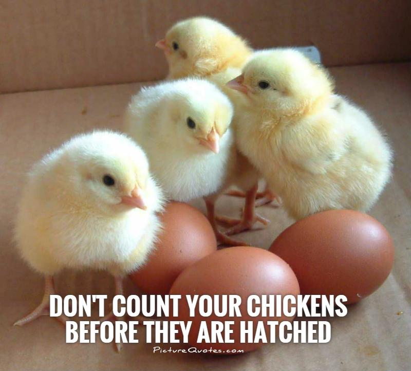 Don't count your chickens before they are hatched Picture Quote #1