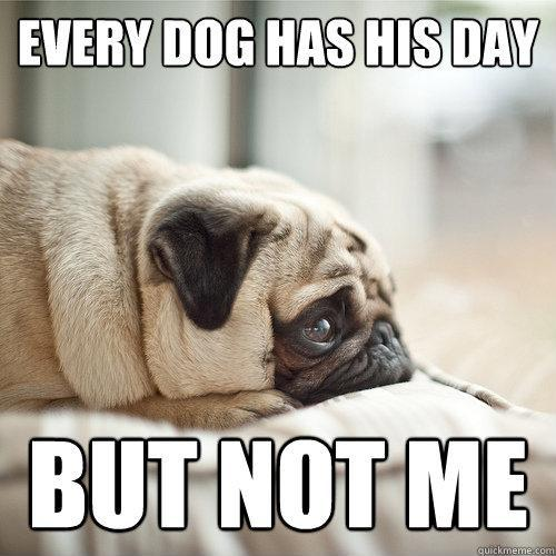 Every dog has his day Picture Quote #1