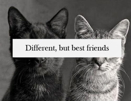 Different but best friends Picture Quote #2