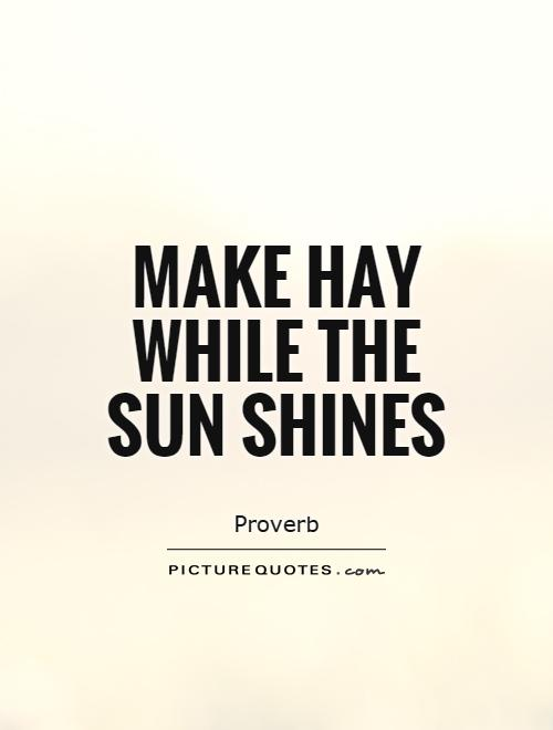Make hay while the sun shines Picture Quote #1