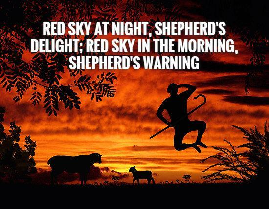 Red sky at night, shepherd's delight; red sky in the morning, shepherd's warning Picture Quote #1