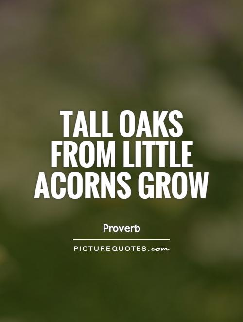 Tall oaks from little acorns grow Picture Quote #1