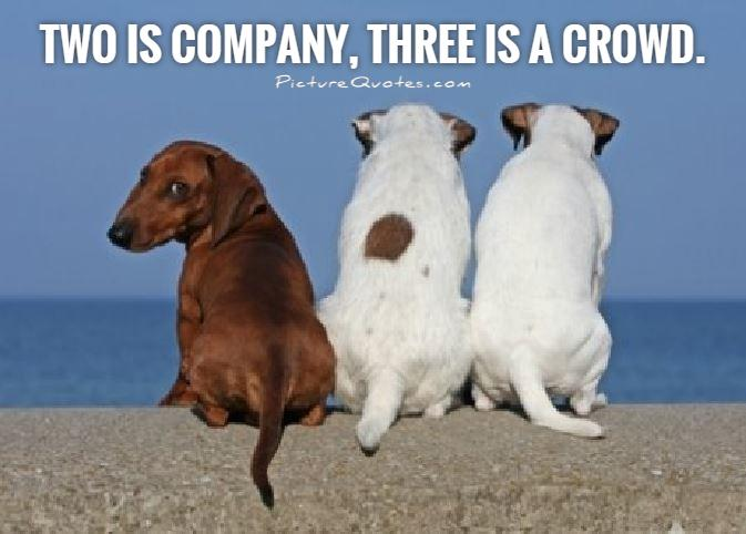 Two is company, three is a crowd Picture Quote #1