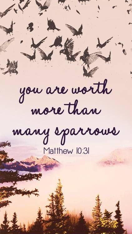 You are worth more than many sparrows Picture Quote #1