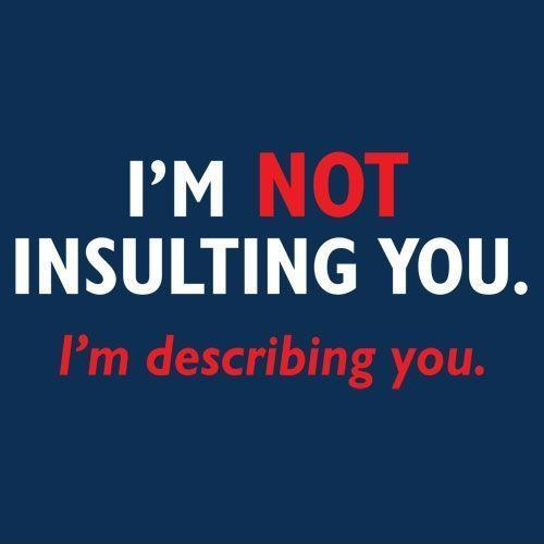 I'm not insulting you. I'm describing you Picture Quote #1