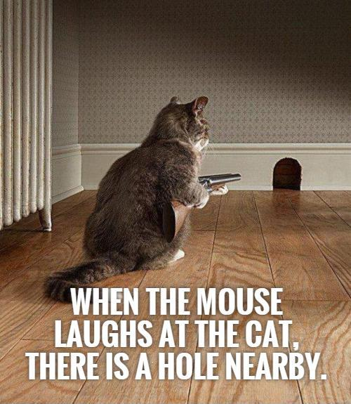 When the mouse laughs at the cat, there is a hole nearby Picture Quote #1