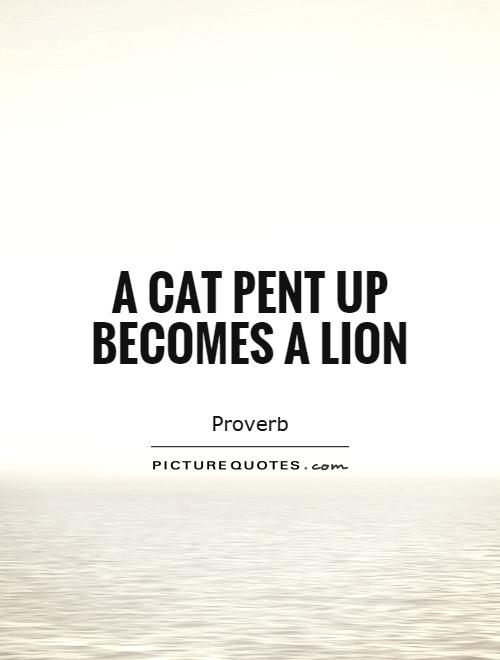 A cat pent up becomes a lion Picture Quote #1