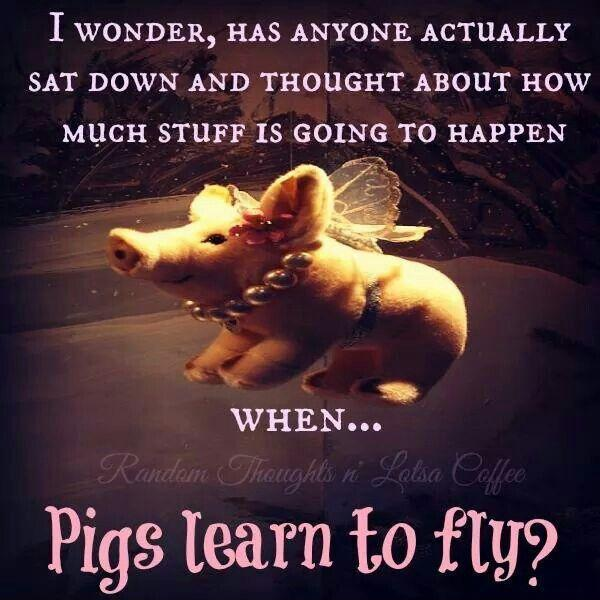 I wonder, has anyone actually sat down and thought about how much stuff is going to happen when pigs learn to fly? Picture Quote #1