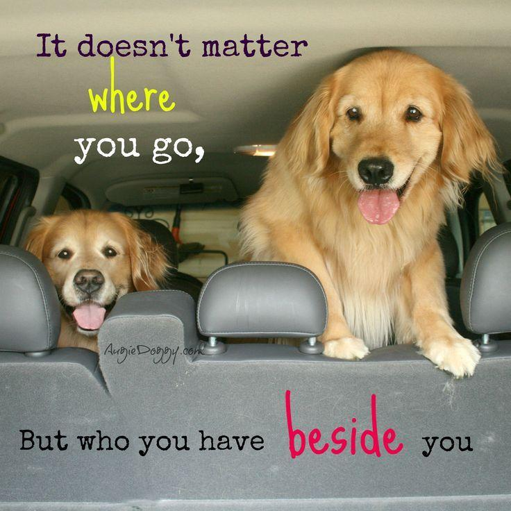It doesn't matter where you go, but who you have beside you Picture Quote #1