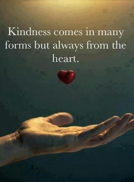Kindness comes in many forms but always from the heart Picture Quote #1