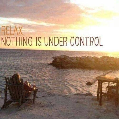 Relax. Nothing is under control Picture Quote #1