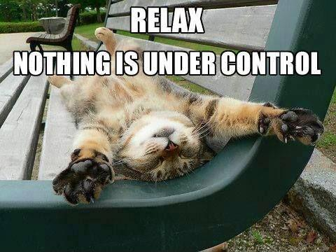 Relax. Nothing is under control Picture Quote #3