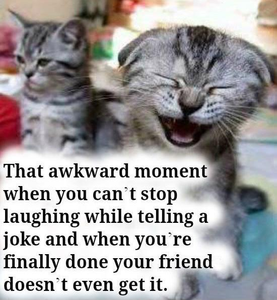 That awkward moment when you can't stop laughing while telling a joke and when you're finally done your friend doesn't even get it Picture Quote #1