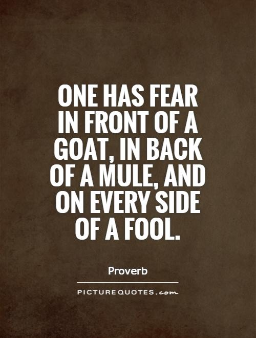 One has fear in front of a goat, in back of a mule, and on every side of a fool Picture Quote #1