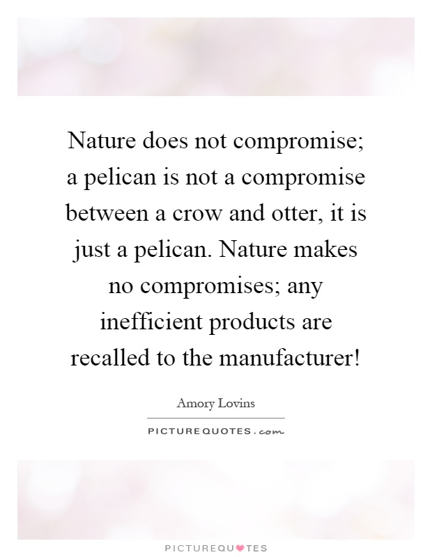 Nature does not compromise; a pelican is not a compromise between a crow and otter, it is just a pelican. Nature makes no compromises; any inefficient products are recalled to the manufacturer! Picture Quote #1