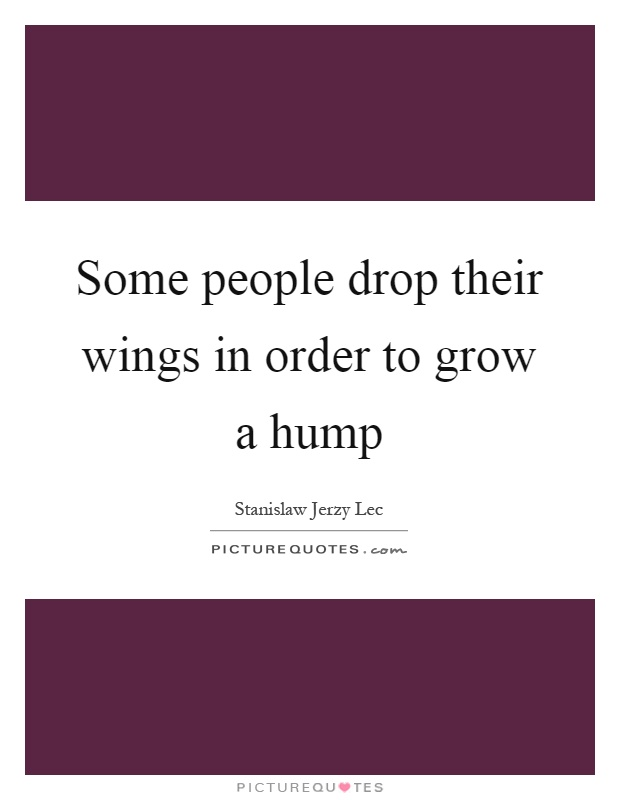 Some people drop their wings in order to grow a hump Picture Quote #1