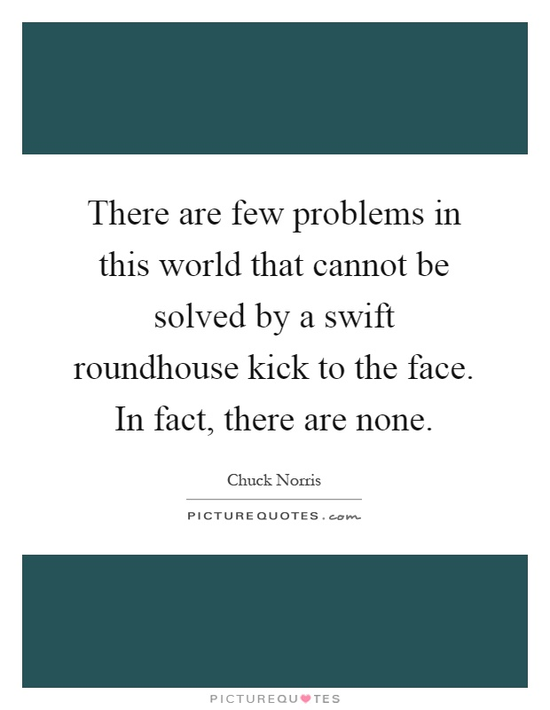 There are few problems in this world that cannot be solved by a swift roundhouse kick to the face. In fact, there are none Picture Quote #1