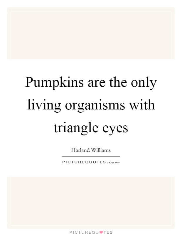 Pumpkins are the only living organisms with triangle eyes Picture Quote #1
