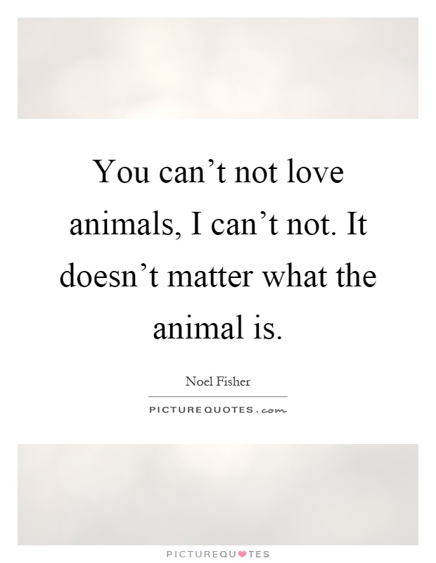 You can't not love animals, I can't not. It doesn't matter what the animal is Picture Quote #1