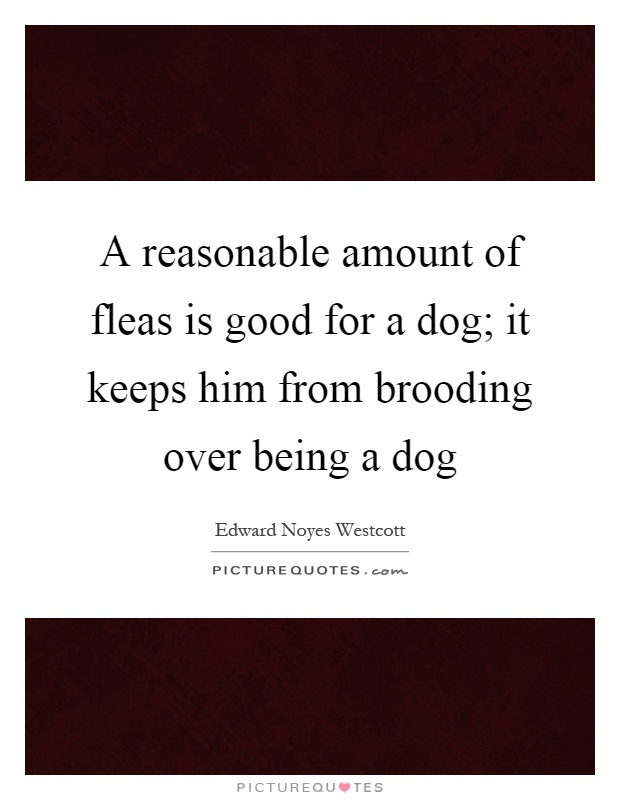 A reasonable amount of fleas is good for a dog; it keeps him from brooding over being a dog Picture Quote #1