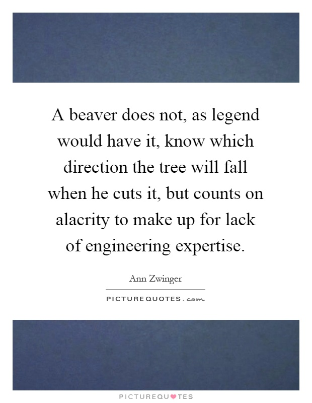 A beaver does not, as legend would have it, know which direction the tree will fall when he cuts it, but counts on alacrity to make up for lack of engineering expertise Picture Quote #1