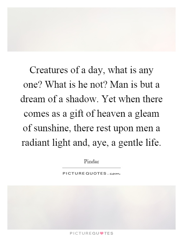 Creatures of a day, what is any one? What is he not? Man is but a dream of a shadow. Yet when there comes as a gift of heaven a gleam of sunshine, there rest upon men a radiant light and, aye, a gentle life Picture Quote #1
